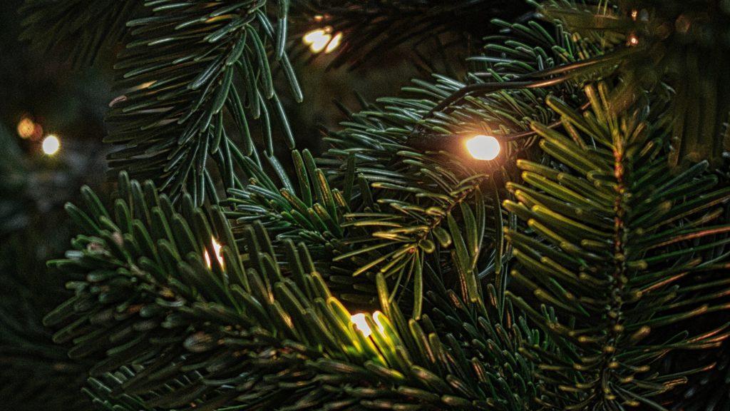 christmas tree decoration 2560x1440 1